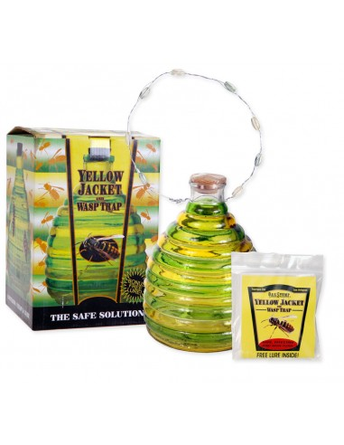 Glass Yellow Jacket and Wasp Trap
