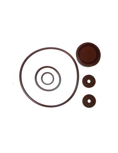 Solo Piston Pump Repair Kit