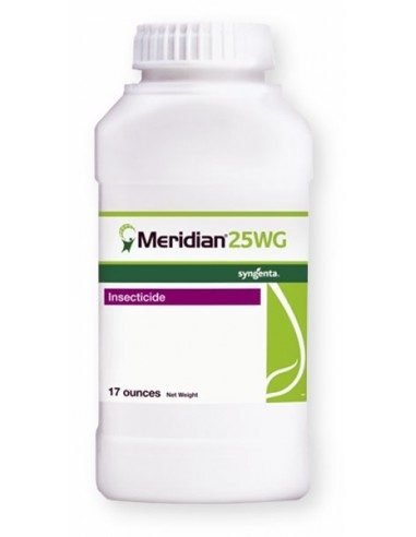 Meridian 25WG