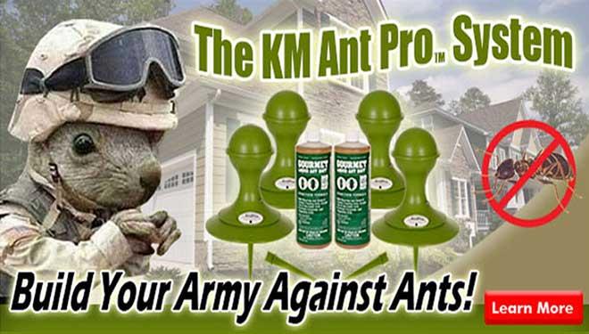 KM Ant Pro System